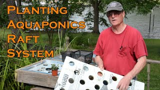 Planting our Aquaponics Rafts