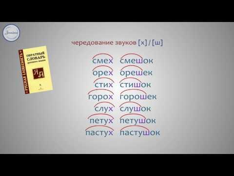 Чередование звуков в корнях слов, которое видно на письме