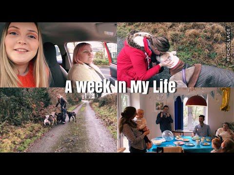 A week in my life | Marvel Amelia