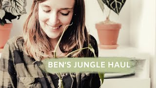 PFLANZENHAUL BEI BEN'S JUNGLE | coyote diaries