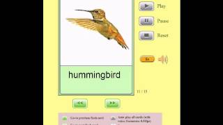 Audio Flashcards for Kids - Animals - Birds