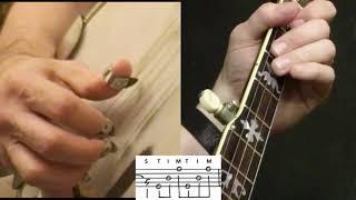 "Bluegrass Banjo Lesson: ""Wagon Wheel"""