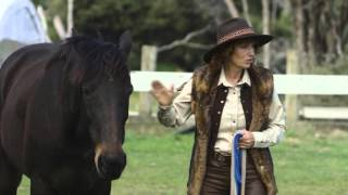 Youtube thumbnail for Jenny May discovers there's more to horses than just riding them