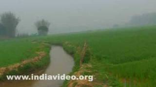 Beautiful landscapes of Tripura