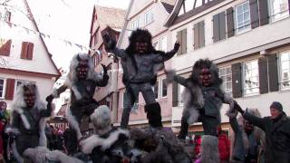 preview picture of video 'Fasnetsumzug Tübingen 2012'