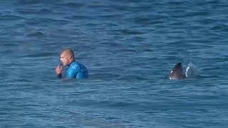 Переживший нападение акулы сёрфингист вернулся в спорт (новости)