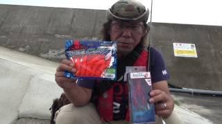 일본 방파제 문어 낚시