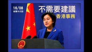 特朗普为何突然关注香港,是谁让美国总统强硬支持示威者? 《新闻今日谈》15082019 | 新西兰华人电视 World TV