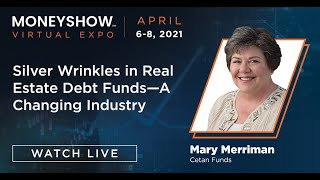 Silver Wrinkles in Real Estate Debt Funds--A Changing Industry
