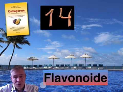 14. Kapitel: Flavonoide