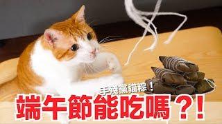 吃吃端午節!特製手殘黨貓小方粽!【貓副食食譜】貓鮮食廚房EP149