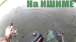 Осенняя рыбалка на реке Ишим, в дождь и ветер. Осенняя Щука