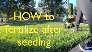 Get your NEW GRASS to GROW