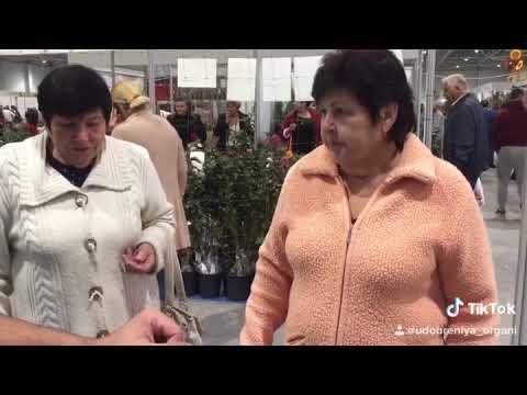 """Видео-отзыв о продукции """"ЭКОСС"""" с Кубанской Ярмарки от наших постоянных клиентов"""