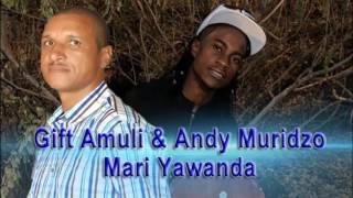 Gift Amuli Ft Andy Muridzo Mari Yawanda