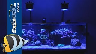 Aquaticlife Halo Freshwater Led Aquarium Light Fixture