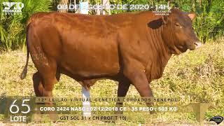 Coro 2424 b4  fiv