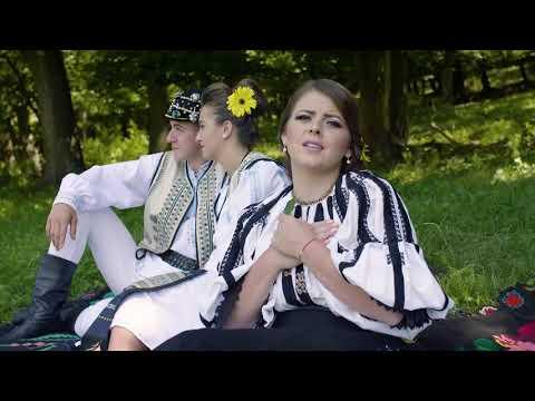 Aliana Vecerzan – Se leagana frunza in vant Video