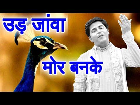 उड़ जांवा मोर बनकेइस भजन कोसुनने से आप जीवन में कभी निराश नहीं होंगे Rakesh sharma