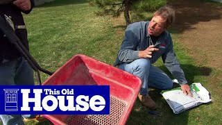 How to Revive a Brown Lawn | This Old House