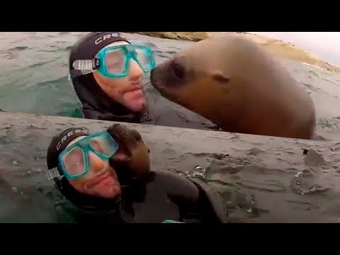 IF IT WERE NOT FILMED NO ONE WOULD BELIEVE IT   AMAZING UNEXPECTED MOMENTS (★7)