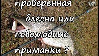 Смотреть онлайн Осенняя рыбалка на спиннинг с интересным уловом