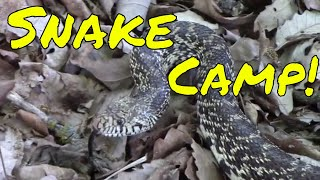 Camping with Snakes! | Heat Survival