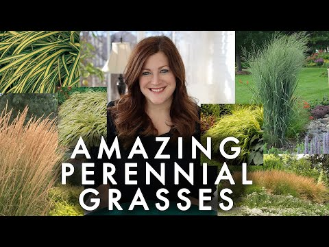 , title : '10 Perennial Grasses I Absolutely Love! 🌾💚// Garden Answer