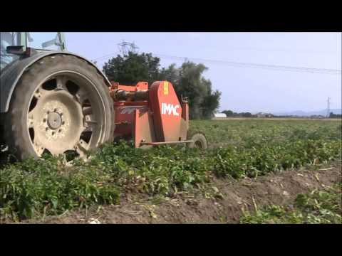 TF 2F trincia foglie per patate - potato haulm topper