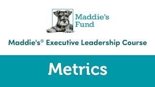 Maddie's Executive Leadership Course: Metrics