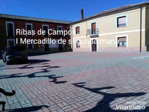 I Mercadillo de segunda mano en Ribas de Campos (Palencia).