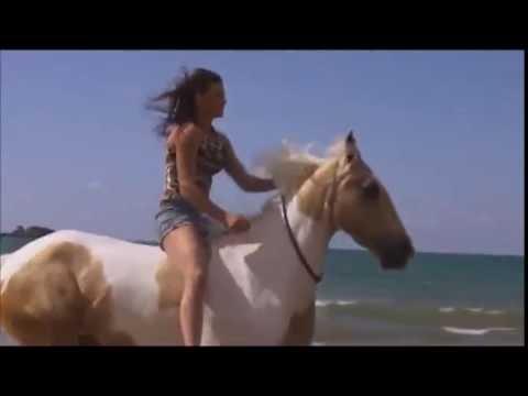 Free Riding - Reiten ohne Sattel und Trense (Doku mit Alycia Burton auf DVD)