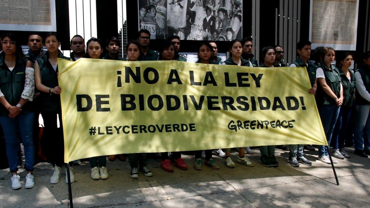 Greenpeace-México protesta contra la ley de Biodiversidad