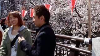 Япония, TOKYO 2010