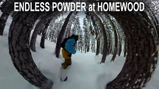 Endless Powder at Homewood on the GoPro Fusion