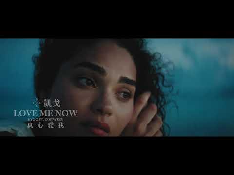 凱戈 Kygo & Zoe Wees / 真心愛我 Love Me Now (中字MV)