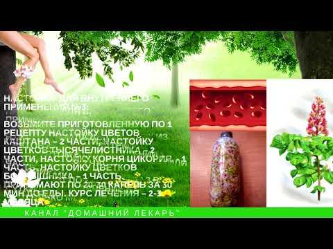 Настойка из цветков каштана. 4 рецепта при варикозе и для суставов - Домашний лекарь - выпуск №50