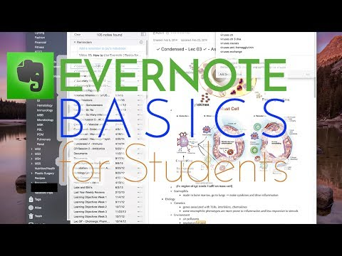How to Use Evernote | Basics for Students [Lecturio]