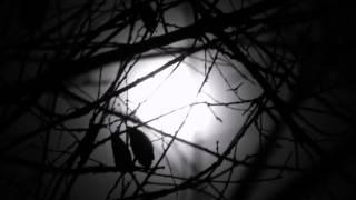 Useless - Depeche Mode (Lyric Video)