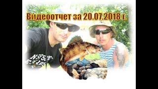 Отчеты о рыбалке в камышине