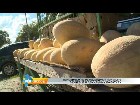 Новости Псков 22.08.2016 # Рейд по точкам продажи арбузов