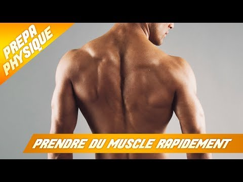 Les retransmissions du bodybuilding