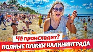 Зеленоградск 2020: ПОЛНЫЕ ПЛЯЖИ Калининграда. Отдых на Балтийском море