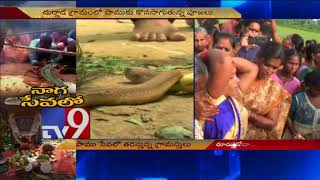 People from other places rush to Durgada for snake darshan - TV9
