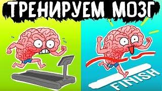 «Тренируем мозг». Рюта Кавашима | (АНИМАЦИЯ)