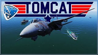 DCS World: F-14B TOMCAT by Heatblur Simulations | First Impressions