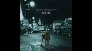 Cactus World News - Reconcile (Audio)