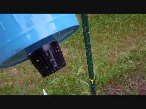 Rain Gutter Hydroponics System On Grow Aquaponically