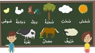 Créatures d'Allah