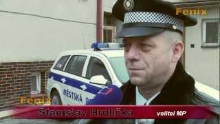 preview picture of video 'Břeclav: Městská policie má nové fotopasti 22.2.2012'